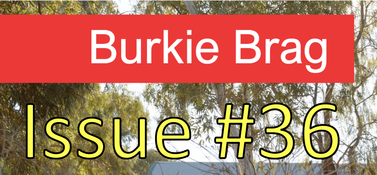 Title image of Burkie Brag Issue 36