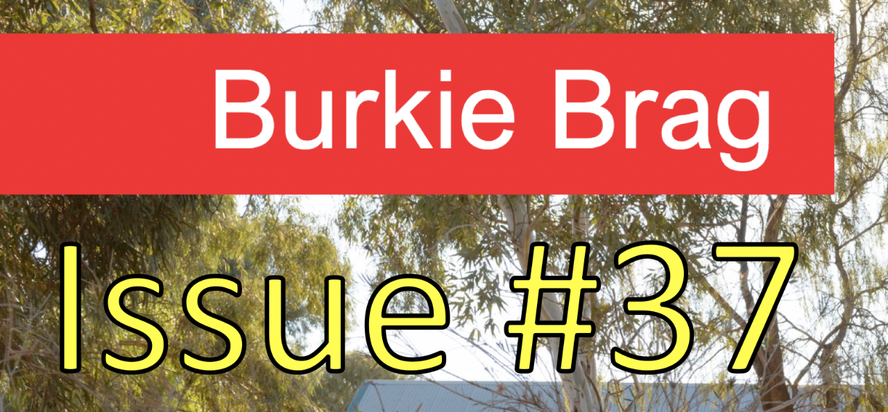 Title image of Burkie Brag Issue 37